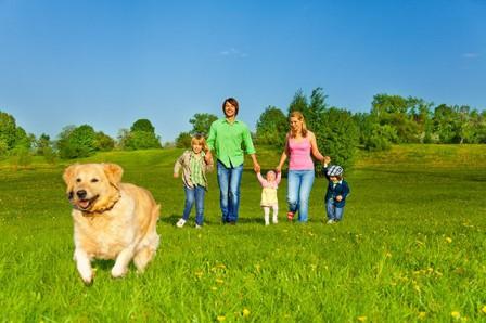 family_walking_with_dog_outdoors.jpg